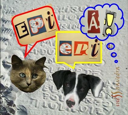 epi-epi-a.jpg
